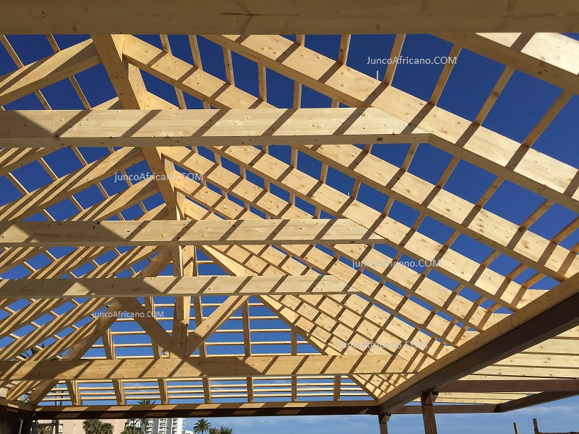 arquitectura-con-madera-pergolas-de-junco-africano