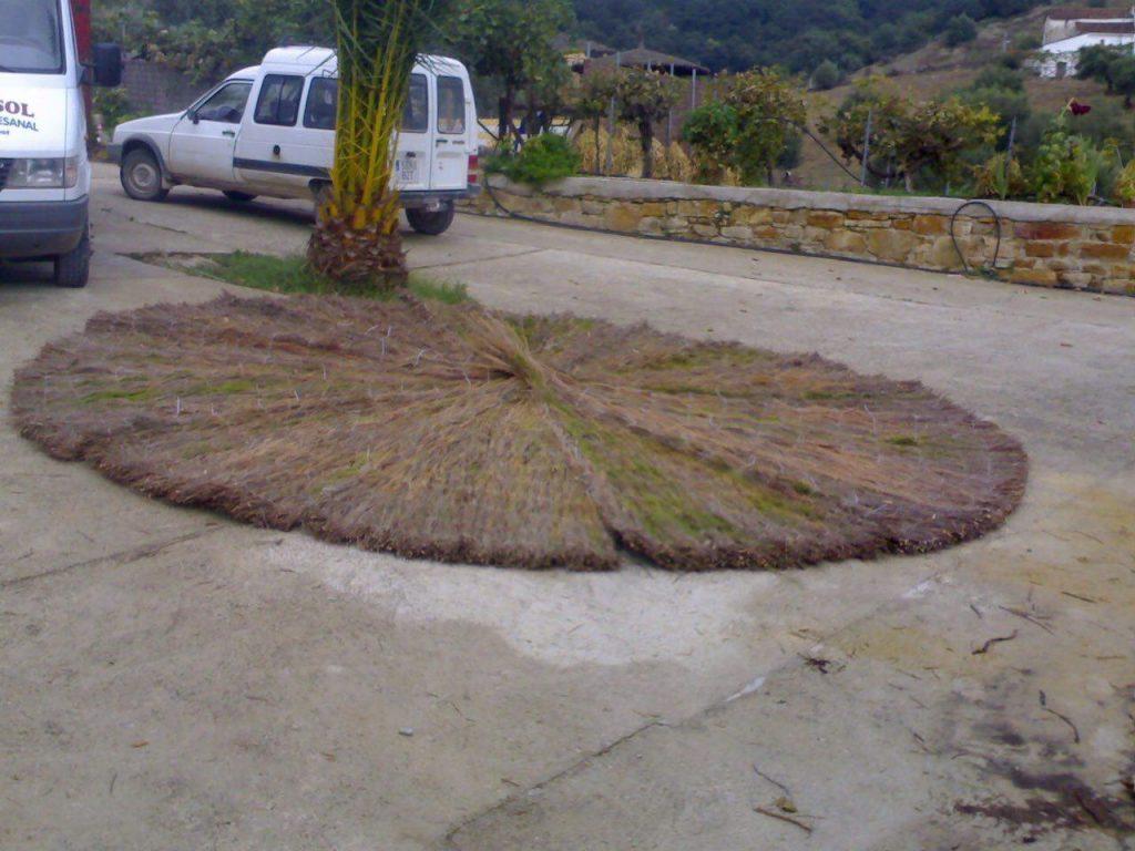 sombrillas-de-brezo-de-3-metros